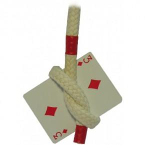 Kartenseil