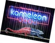 Kameleon von Pierre-Andre Gosselin