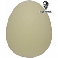 Schwamm Ei